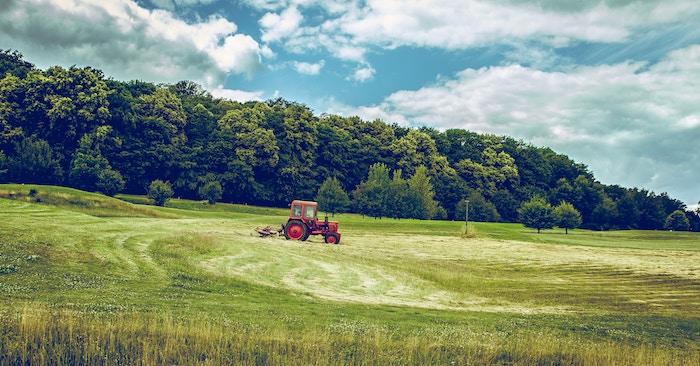 Le bio n'est-il rien d'autre qu'une agriculture sans pesticides?